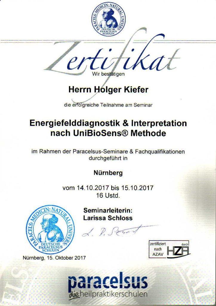 Zertifikat Energiefeldiagnostik